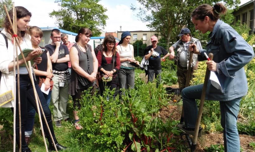 Cours certifié de permaculture